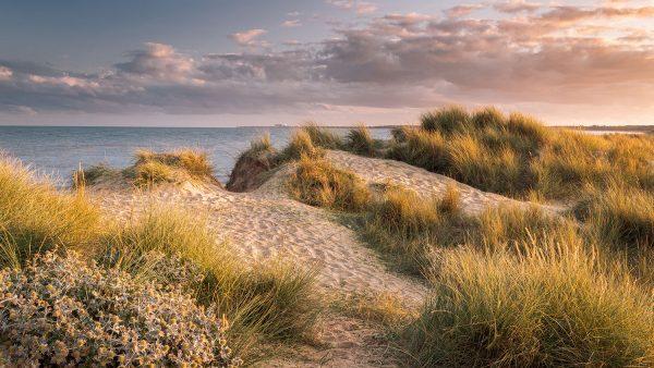 Walberswick, Suffolk